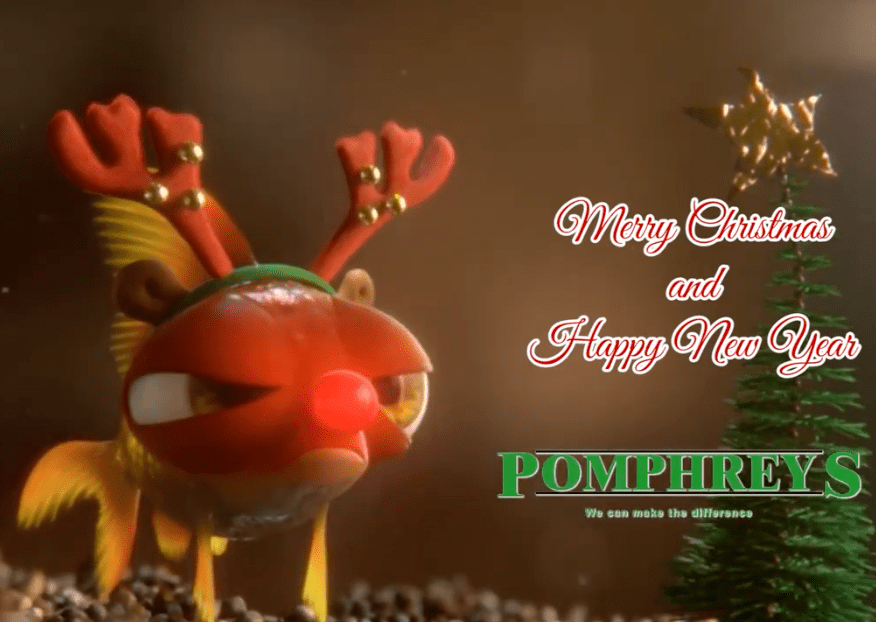 Merry Christmas From Pomphrey's